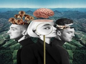 Playboy Style - Clean Bandit