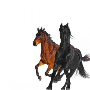 Old Town Road (Remix) - Lil Nas X Featuring Billy Ray Cyrus